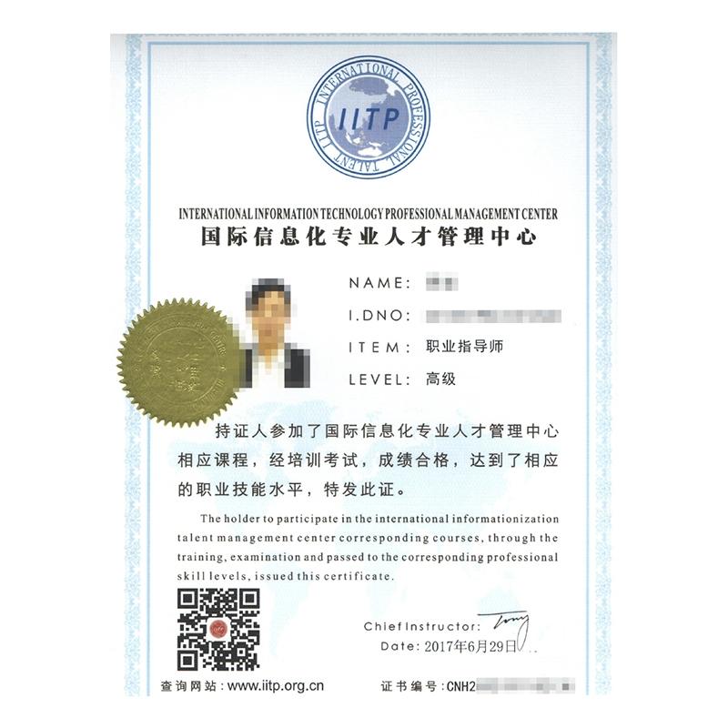 国际信息化专业人才技能鉴定证书